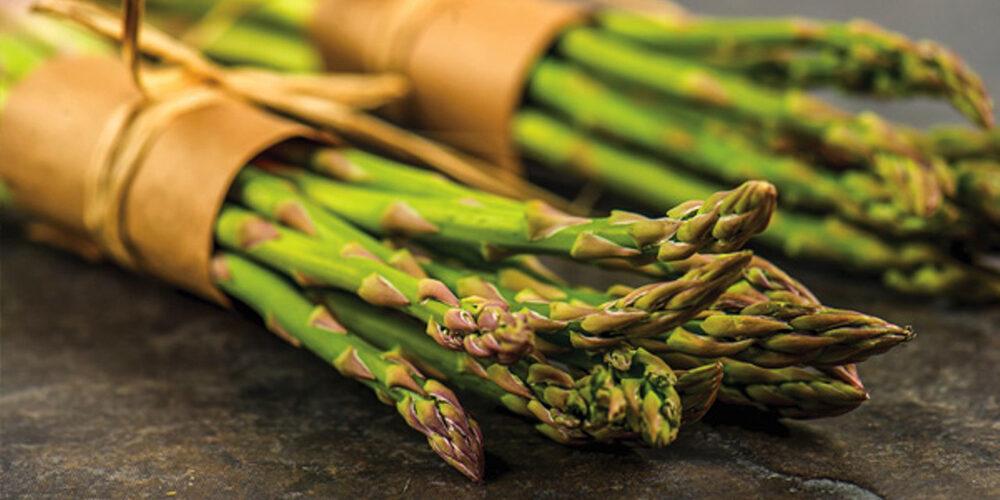 Growing Asparagus
