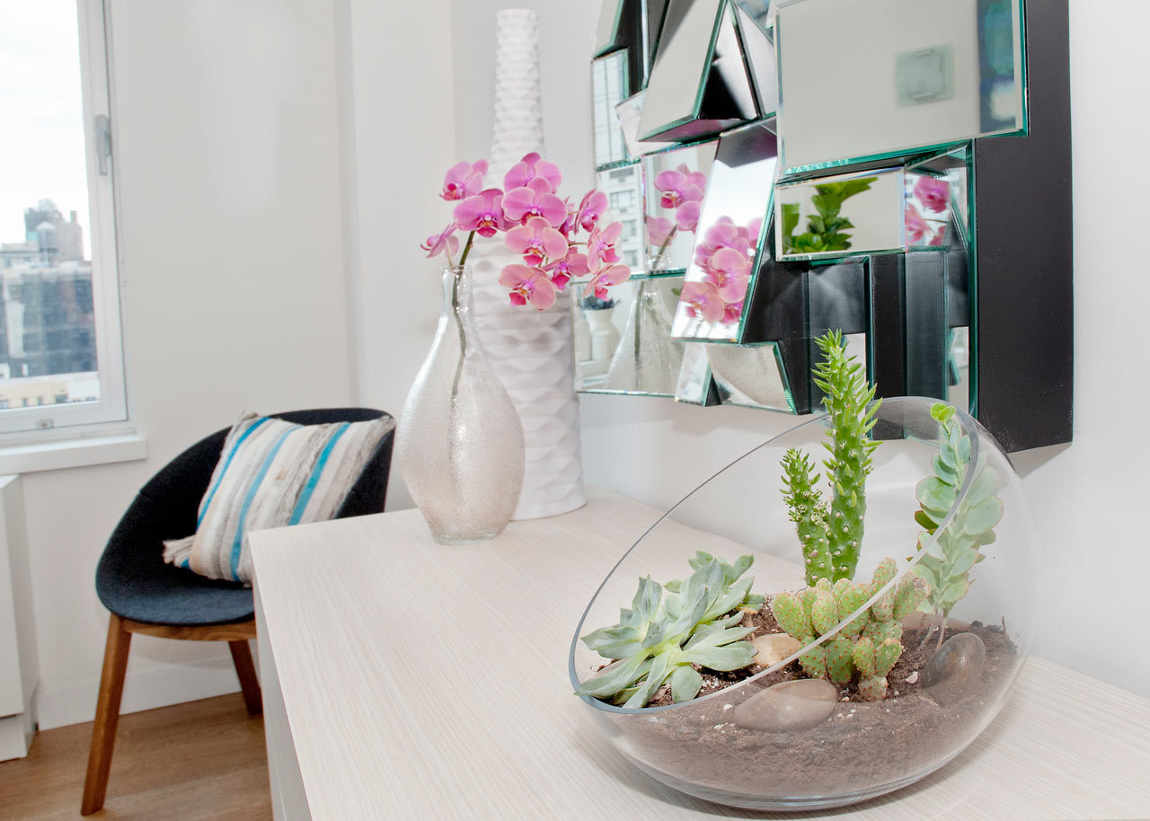 How to Use Plants in Modern Interior Design