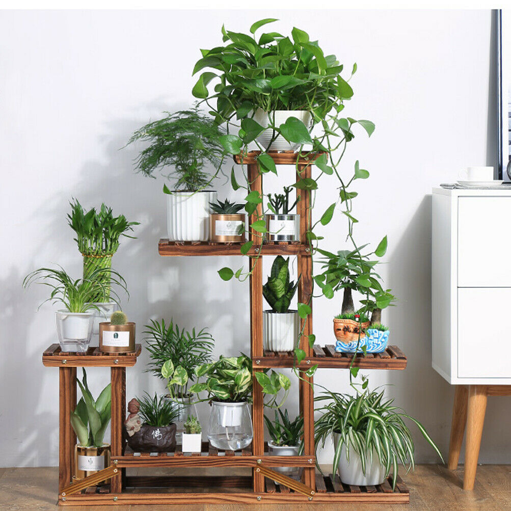 Different Wooden Plant Stands
