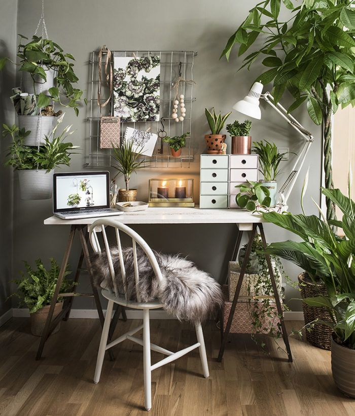 Make Your Working Space Green