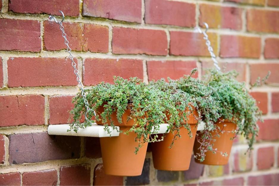 How to Build a Plant Display Shelf