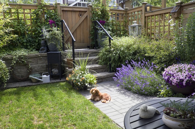 Big Landscaping Ideas for Small Backyards