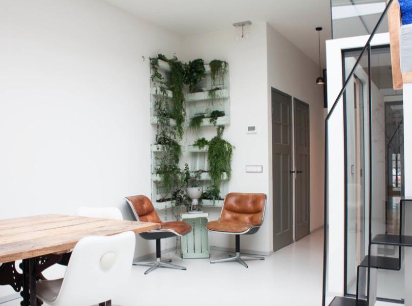 Favorite Ways To Display House Plants