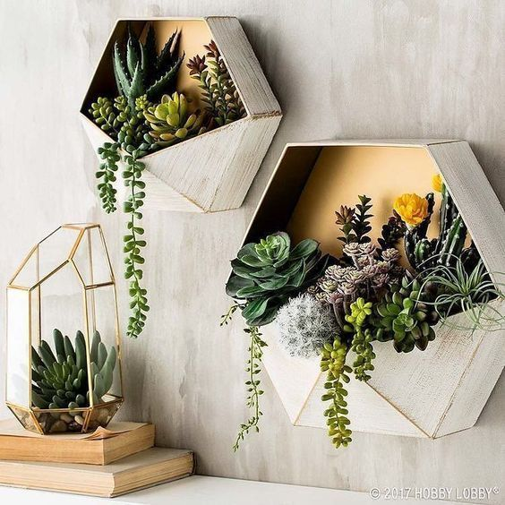 Indoor Wall Plant Decor